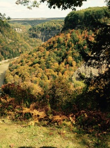 Letchworth_Gorge